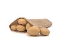 Lanorma – Cartofi de sămânță – Solana România