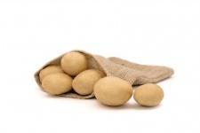 Laperla – Cartofi de sămânță – Solana România
